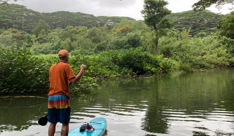 Tom on a paddboard on the Kalahiwai River