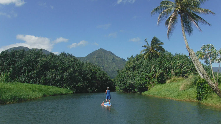 Wide shot of a paddle board on the Hanalei River with mountains in the background