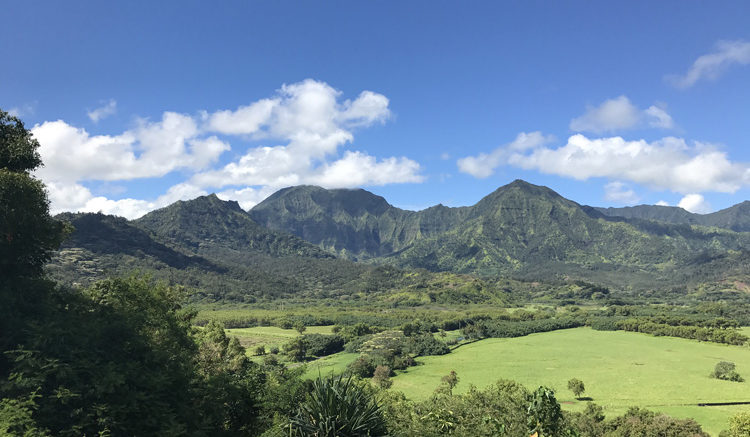 The overlook of the north shore of Kauai near Princeville