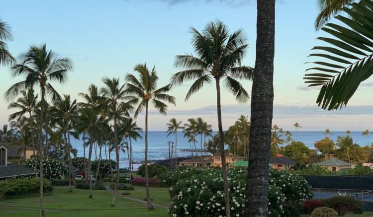 View of the ocean from Kahala 623