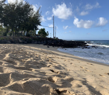 Image of the sand and beach at Brennekes Beach